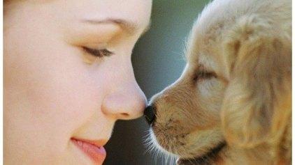 Πως το σκυλί σας μπορεί αποτρέψει το άσθμα του παιδιού σας