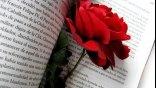 23 Απριλίου… Παγκόσμια ημέρα βιβλίου !