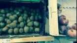 ΕΕ: Οικονομική βοήθεια σε αγρότες για το εμπάργκο της Ρωσίας