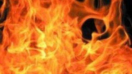 Υπό έλεγχο η μεγάλη πυρκαγιά στην Πάργα