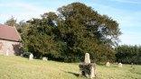 Κινδυνεύει δέντρο 4.000 ετών