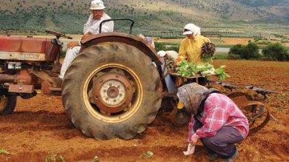 Δέκα σημεία για τους αγρότες...