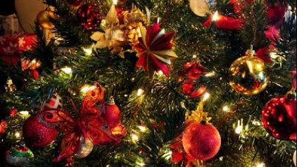 Χριστουγεννιάτικη παιδική γιορτή στη Δαμάστα