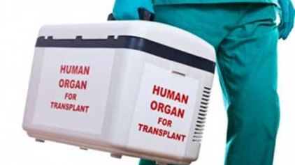 Πάνω από 63.000 ασθενείς σε λίστα αναμονής για μεταμόσχευση στην ΕΕ