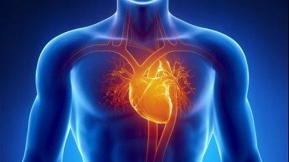 Τα τρόφιμα ολικής άλεσης φροντίζουν την καρδιά