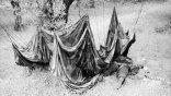 Η κρητικοπούλα που έφτιαξε το νυφικό της από...γερμανικό αλεξίπτωτο!