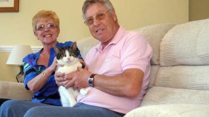 Δώρισαν τον καναπέ τους και μαζί... το γάτο τους!