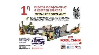 1η Έκθεση μορφολογίας και εξέταση εργασίας Γερμανικού Ποιμενικού σκύλου από το ΚΟΠΓΕ Ηρακλείου