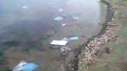 Πλημμυρίδα ... πλαστικών στην παραλία