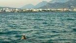 Χελώνες και ψαράδες ... στα ίδια νερά