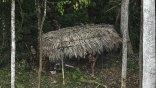 Ανακαλύφθηκε άγνωστη φυλή του Αμαζονίου
