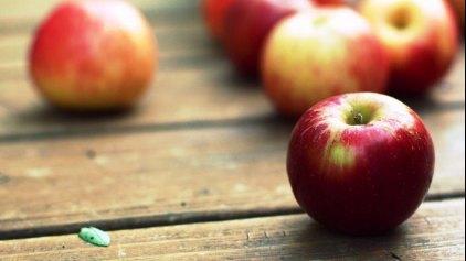 Ένα μήλο την ημέρα αρκεί;