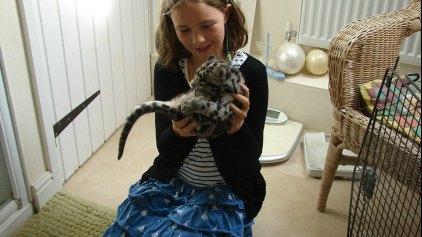 Mία λεοπάρδαλη στο μπάνιο