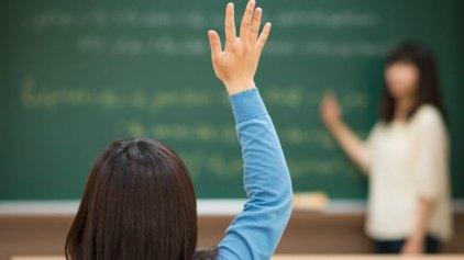 Ο ρόλος των εκπαιδευτικών στις Τάξεις Υποδοχής και τα Φροντιστηριακά Τμήματα