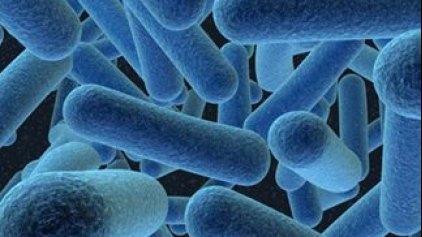 Νέο ισχυρό αντιβιοτικό μετά από 30 χρόνια