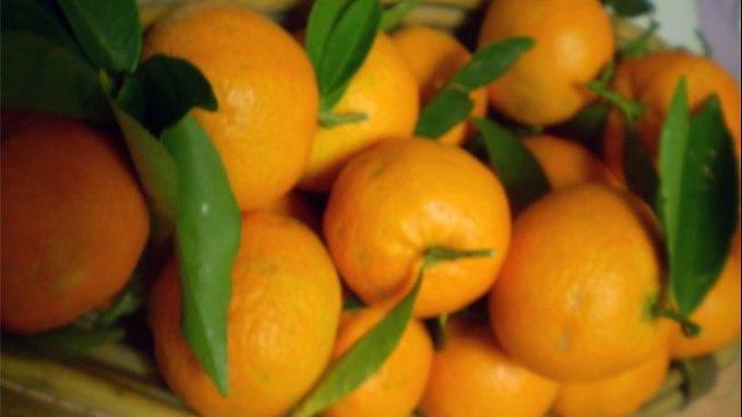 Τί σημαίνει διατροφικά το μανταρίνι