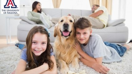 Αλλεργίες: Πώς τα κατοικίδια σκυλιά μπορούν να βοηθήσουν τον άνθρωπο