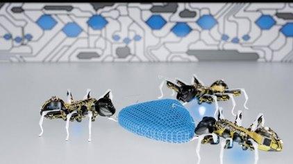 Ρομποτικά μυρμήγκια με μέλλον στην εργοστασιακή παραγωγή
