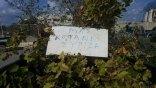 Πολλά τα...μηνύματα από το αγροτικό συλλαλητήριο!