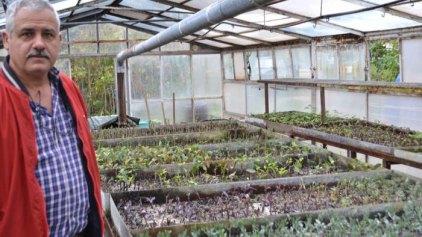 Αναβαθμίζεται το φυτώριο του Δήμου Χανίων