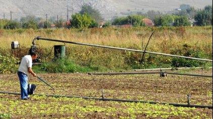 Η Αγροτική Οικονομία σε Σταυροδρόμι