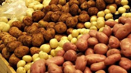Οι πατάτες μειώνουν τον κίνδυνο για εμφάνιση καρκίνου του στομάχου