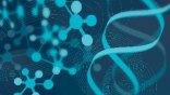 Ένα γονίδιο μπορεί να παρατείνει κατά 25% τη διάρκεια ζωής