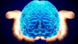 Βρέθηκε ο μηχανισμός που ξυπνά τον εγκέφαλο από τον ύπνο