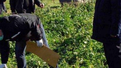 Εντοπίστηκε πτώμα γυναίκας σε χωράφι