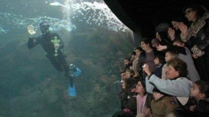 Το πρόγραμμα Αγιασμού των υδάτων στις Γούρνες