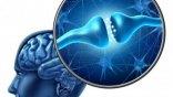 Γονιδιακή μετάλλαξη ρίχνει φως στις ρίζες της σχιζοφρένειας