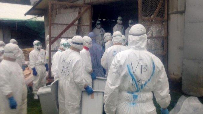 Εντοπίστηκε νέο κρούσμα της γρίπης των πτηνών σε πάπιες
