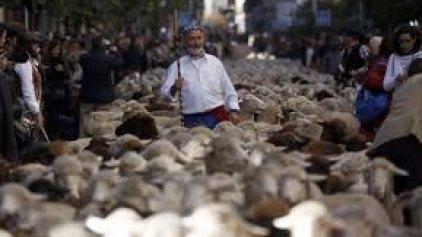 Έξω από τον ΟΠΕΚΕΠΕ αύριο οι κτηνοτρόφοι