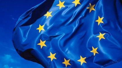 Ευρωπαϊκές εκλογές, Ευρωπαϊκές απαντήσεις