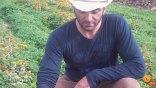Νέες προκλήσεις για τα αρωματικά φυτά της Σητείας