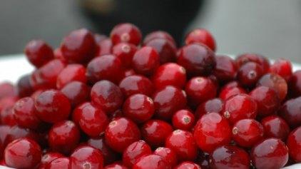 Πηγή βιταμινών αποτελούν τα κράνμπερι