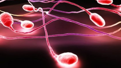 Γονίδια της γεύσης σχετίζονται με την ανδρική γονιμότητα